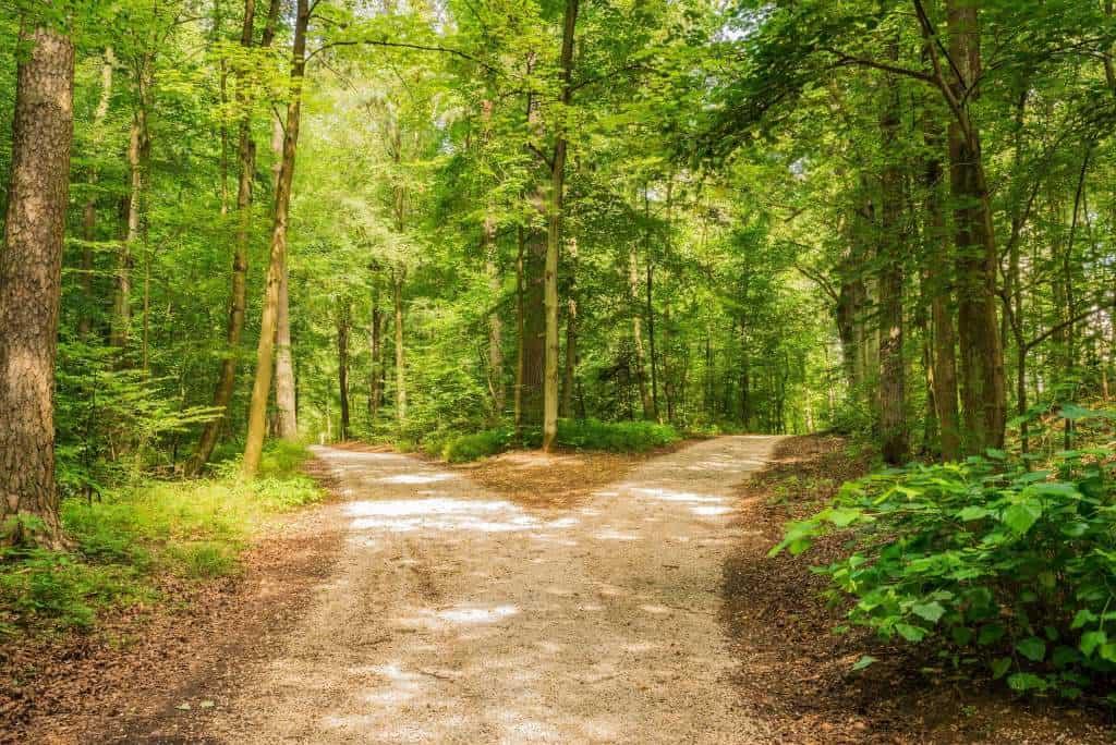 sophrologie trouver son chemin